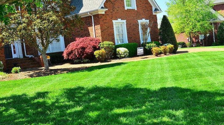 zahrada-728x410-728x409.jpg