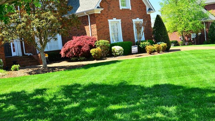 zahrada-728x410.jpg