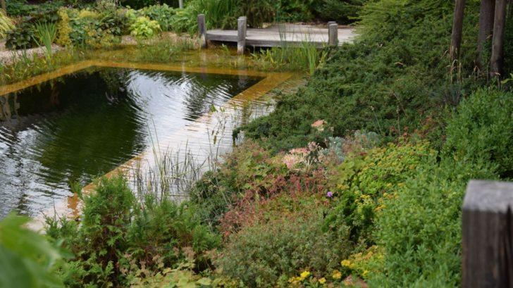 klidna-vodni-hladina-funguje-jako-zrcadlo-ktere-zvetsuje-prostor-zahrady-728x409.jpg