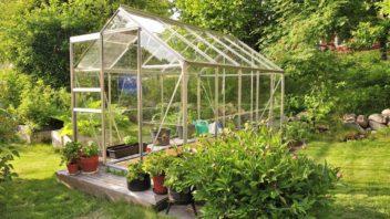 pred-zacatkem-leta-je-vhodne-skla-bez-povrchove-upravy-povapnit-aby-nedoslo-k-popaleni-pestovanych-rostlin-352x198.jpg