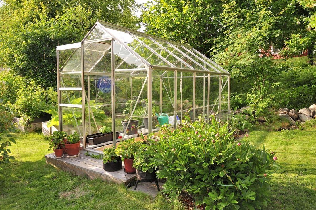 pred-zacatkem-leta-je-vhodne-skla-bez-povrchove-upravy-povapnit-aby-nedoslo-k-popaleni-pestovanych-rostlin.jpg