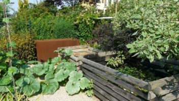 uzitkova-zahrada-by-mela-byt-hlavne-take-prakticka.-352x198.jpg