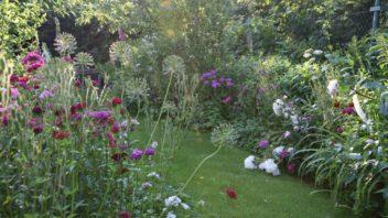 zahrada-pro-ptactvo-by-mela-byt-idealne-trochu-divoka-a-prirodni.-352x198.jpg
