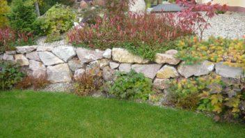 zidku-do-zahrady-nejlepe-zaclenite-vysadbou-rostlin-do-sten-na-korunu-i-k-jeji-pate.-352x198.jpg