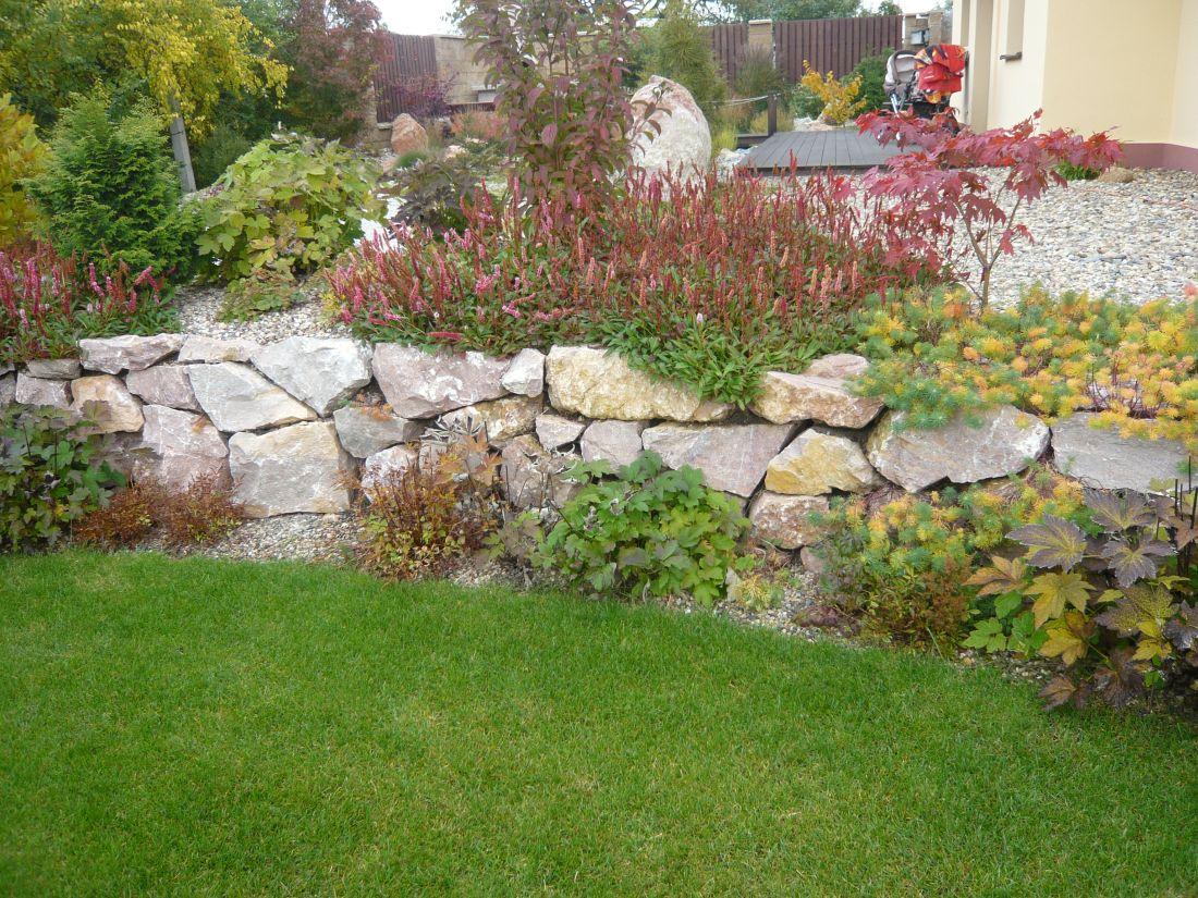 zidku-do-zahrady-nejlepe-zaclenite-vysadbou-rostlin-do-sten-na-korunu-i-k-jeji-pate..jpg