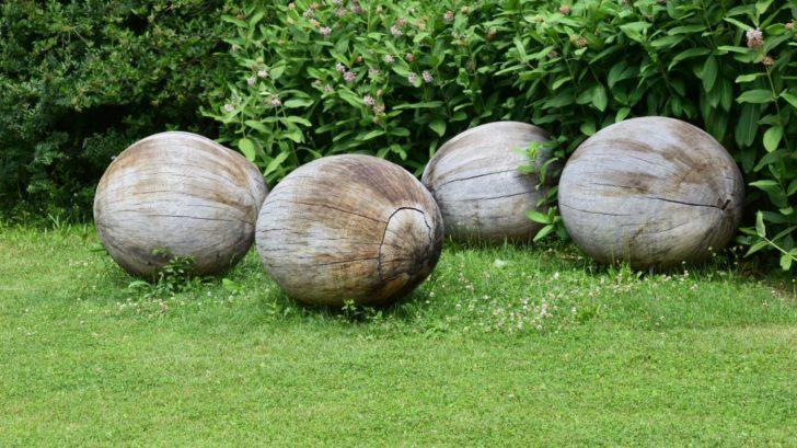 6-drevo-muze-mit-mnoho-podob.-728x409.jpg
