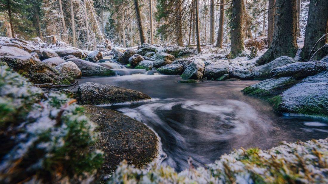 bily-potok-proteka-malebnymi-lesy-1100x618.jpg