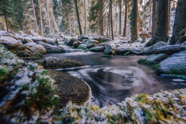 bily-potok-proteka-malebnymi-lesy-614x410.jpg