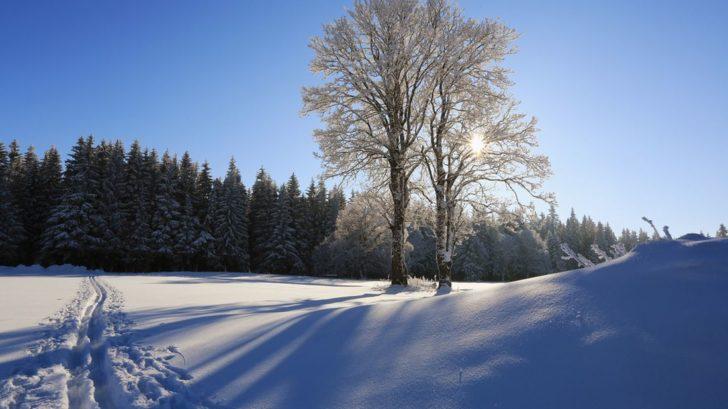 krajina-na-sumave-ziska-nejvetsi-kouzlo-hlavne-behem-zimy-728x409.jpg