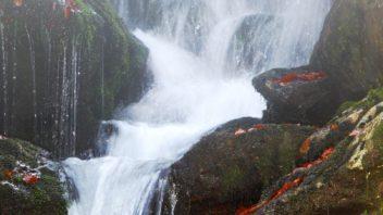 sumavsky-vodopad-na-bilem-potoce-bila-strz-352x198.jpg
