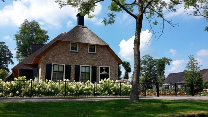 kvetouci-hortenzie-na-predzahradce-u-holandskeho-domu-728x409.jpg