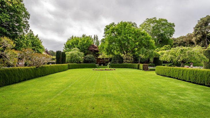 zivy-plot-v-anglicke-zahrade-728x409.jpg