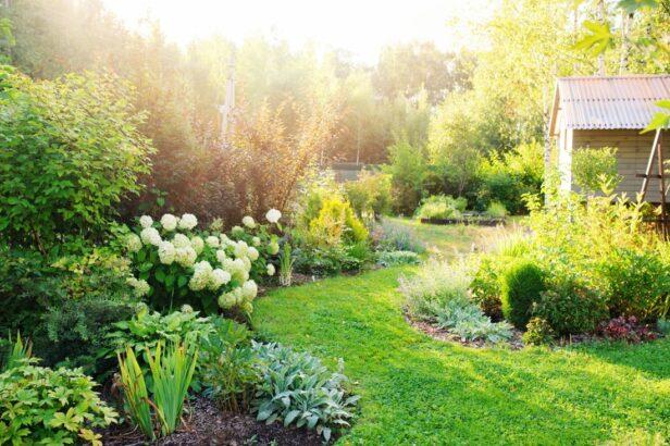 prirodni-zahrada-616x410.jpg