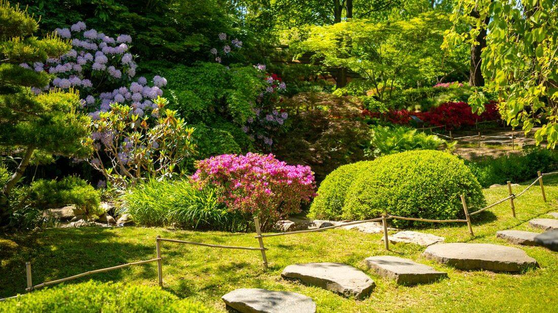 zahrada-u-lesa-1100x618.jpg