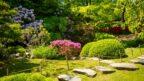 zahrada-u-lesa-144x81.jpg
