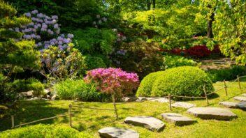 zahrada-u-lesa-352x198.jpg