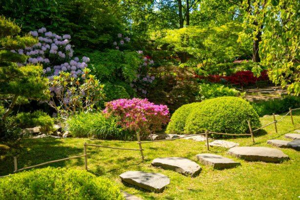 zahrada-u-lesa-614x410.jpg