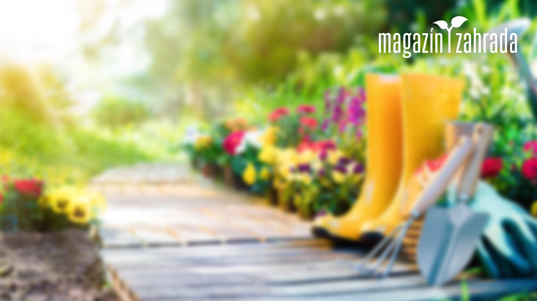 Praktické zahradní oblečení a vybavení nepodceňujte. Ušetří kroky a ochrání  vás b2c19e08bb